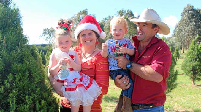 READY FOR HARVEST: Katrina, Evelyn, West and Brad Fraser are excited to deliver their first Christmas tree harvest.
