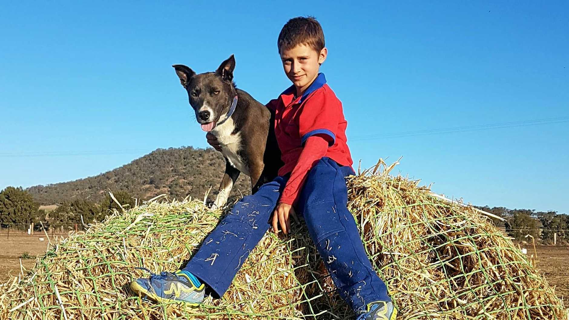 BEST MATES: When Jack and Blue laid eyes on each other, they knew they were going to be best mates. The   boy from Goomburra and  dog  keep one another company through thick and thin.