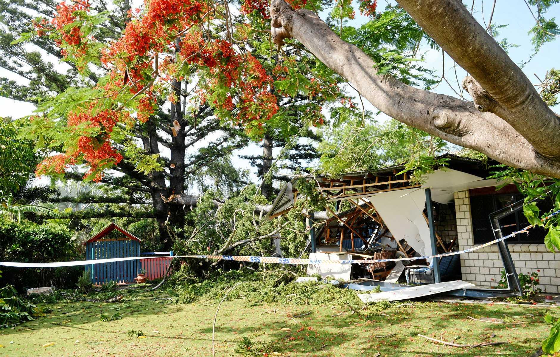 House damaged by falling tree on Elphinstone St.