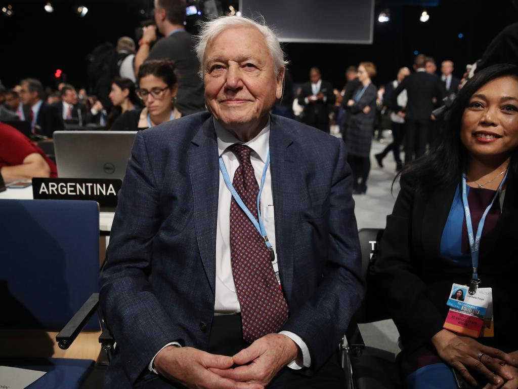 Sir David Attenborough issued a dire warning at the UN climate change summit. Picture: Sean Gallup/Getty Images
