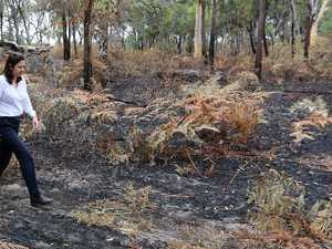 State starting to calculate bushfire costs