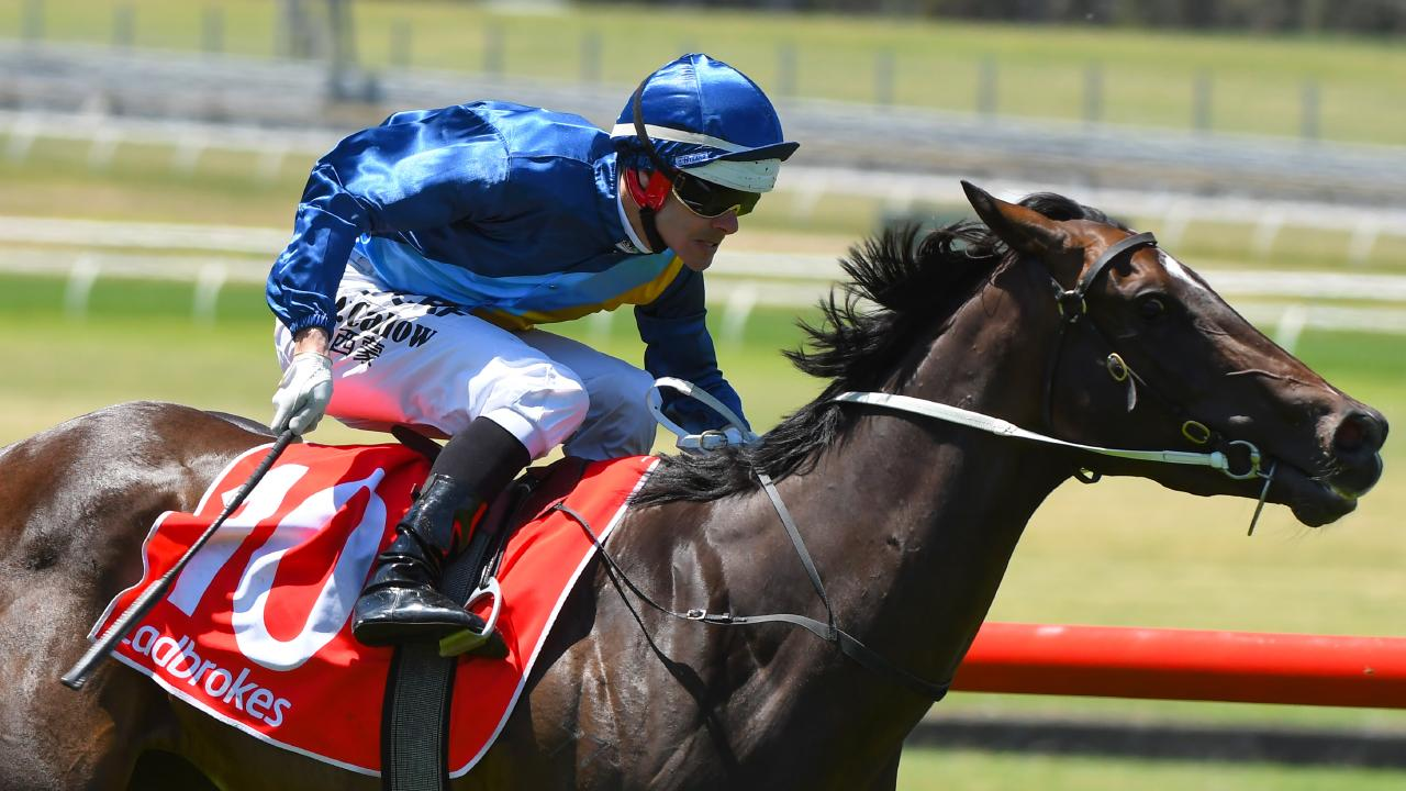Noel Callow suffered a heavy fall at Sandown. Picture: Getty Images