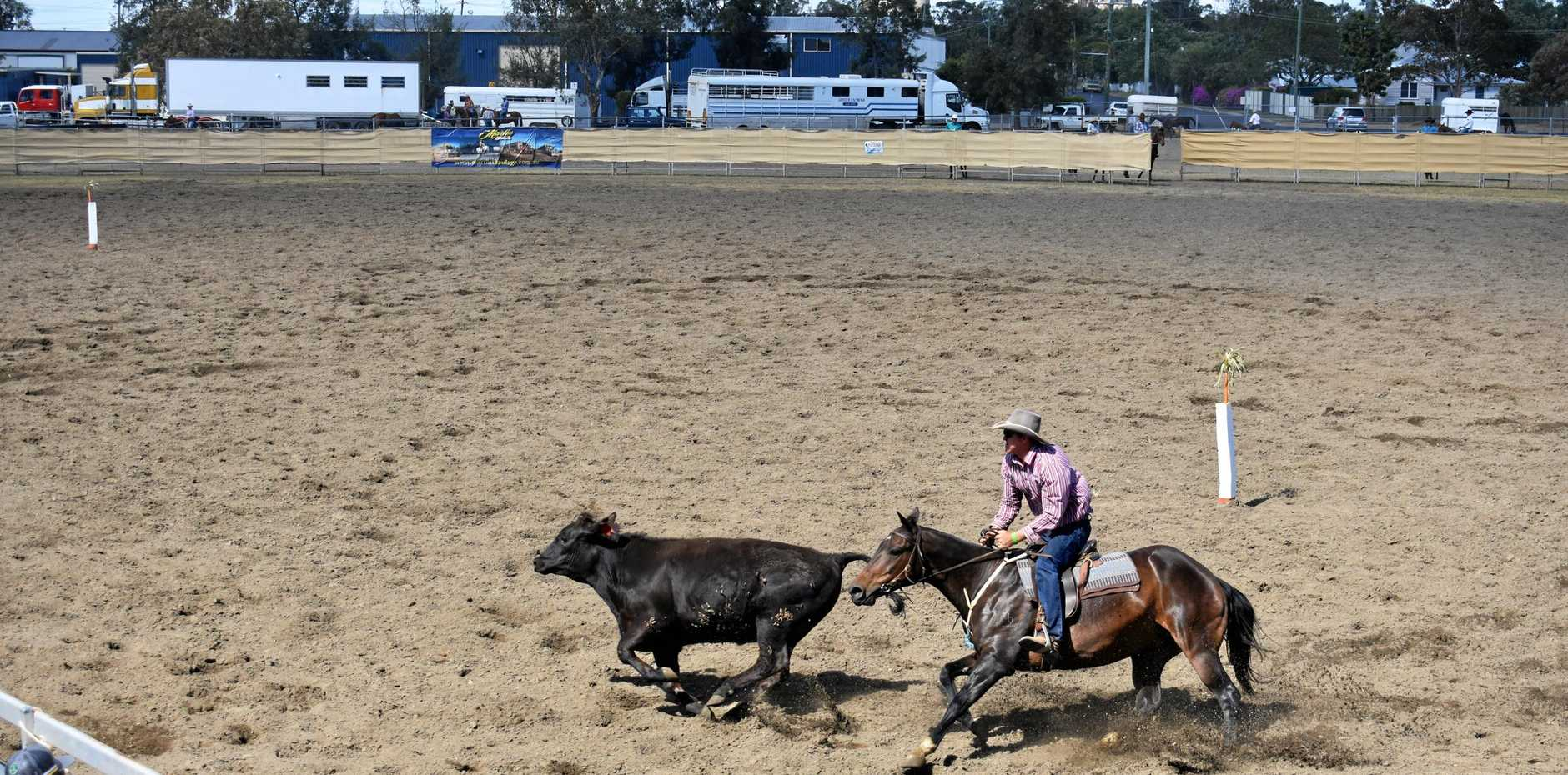 GIDDY-UP: The campdrafting event on Friday at the Dalby Australian Stock Horse Sale 2018.