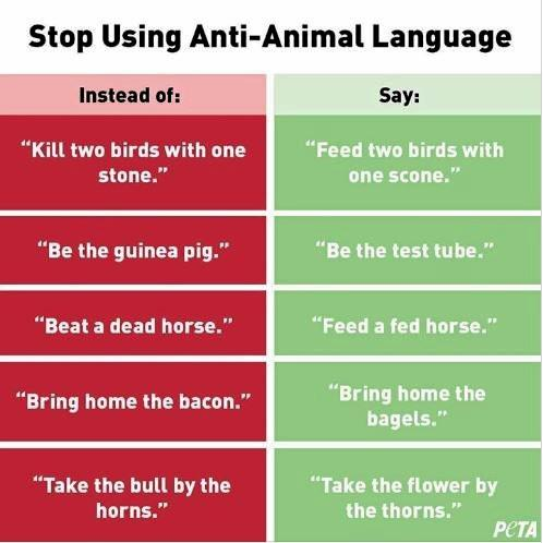 Animal rights group PETA are suggesting sayings like