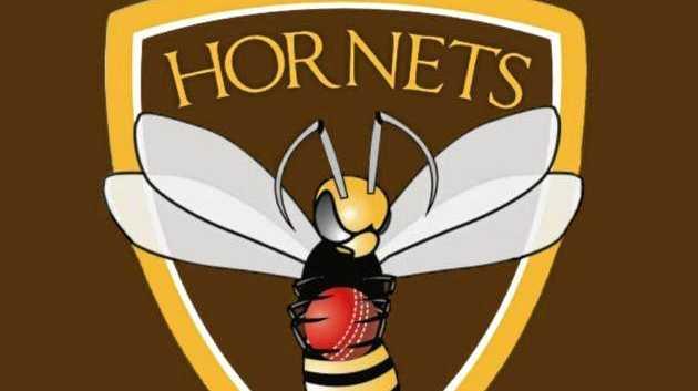 Ipswich/Logan Hornets cricket club logo.