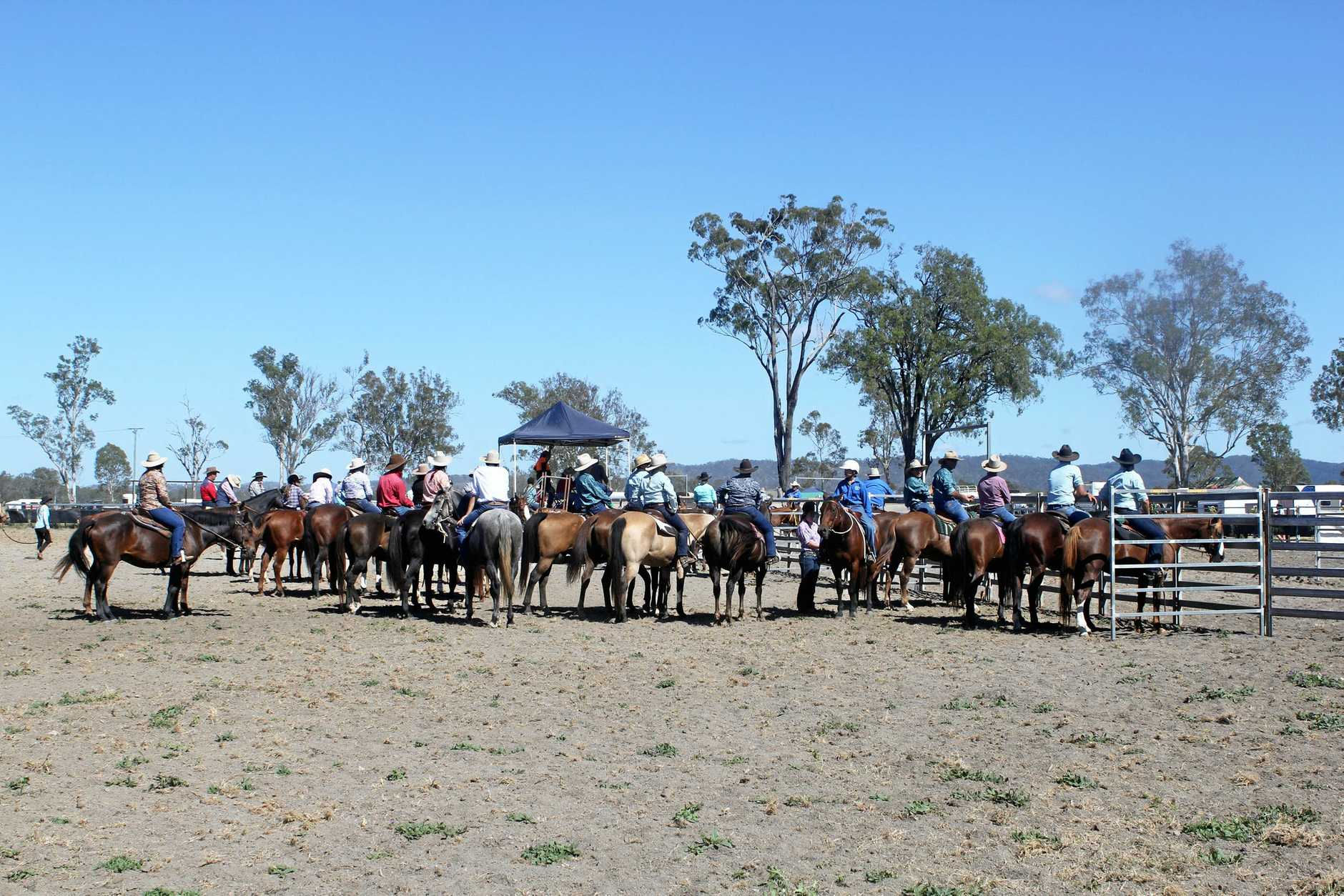 KILKIVAN: Team Penning competition at the Kilkivan Showgrounds.Photo Contributed
