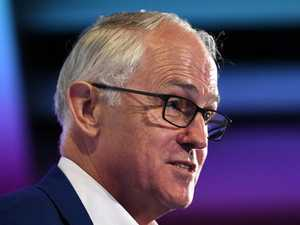 Turnbull cagey on Wentworth endorsement