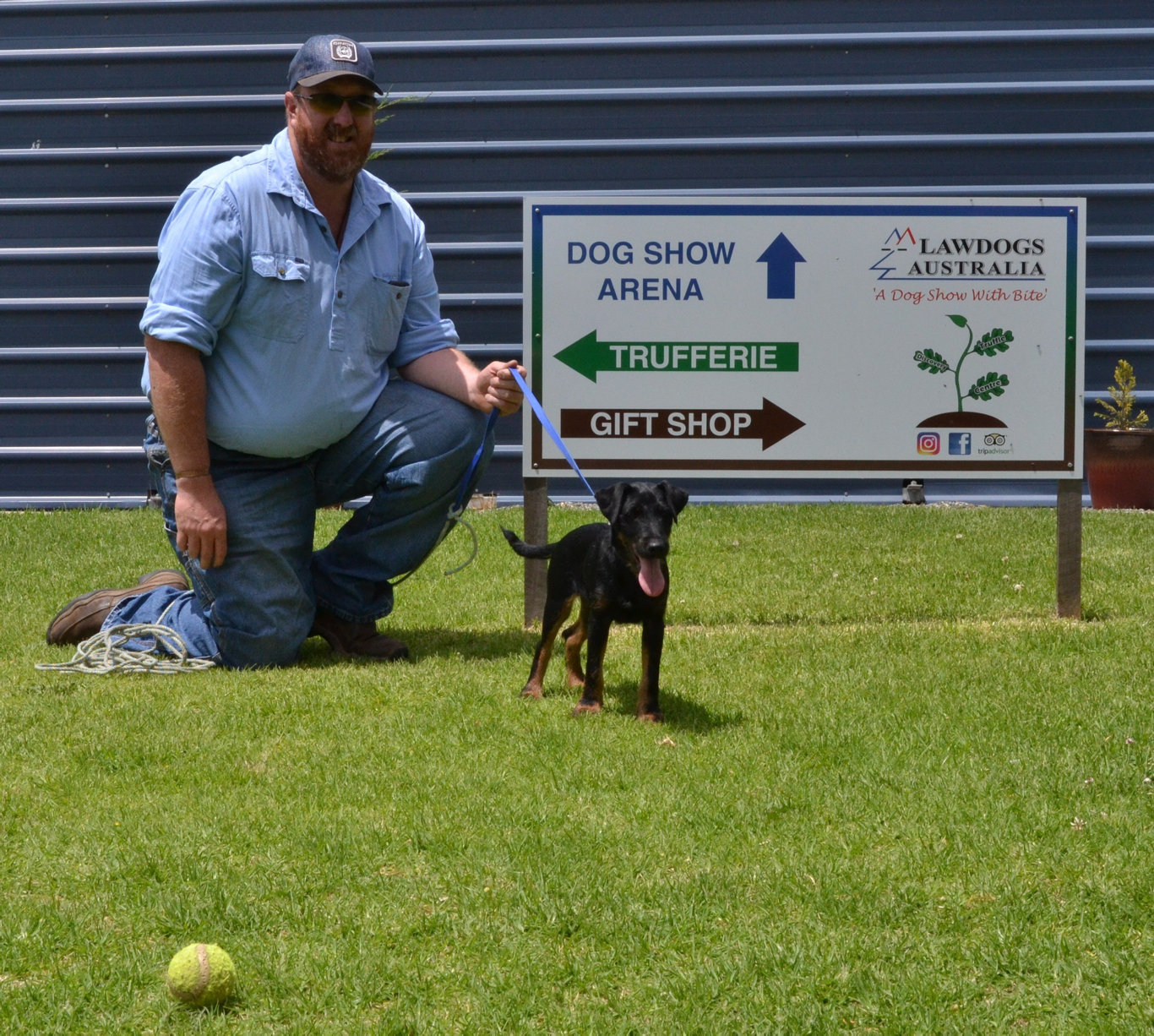PUP POWER: Granite Belt Honey owner Jason Traplin with his new pup Jag, who is being trained by Lawdogs Australia to detect a disease that can destroy bee populations.