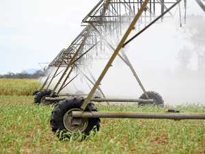 Irrigators, businesses urged to write response