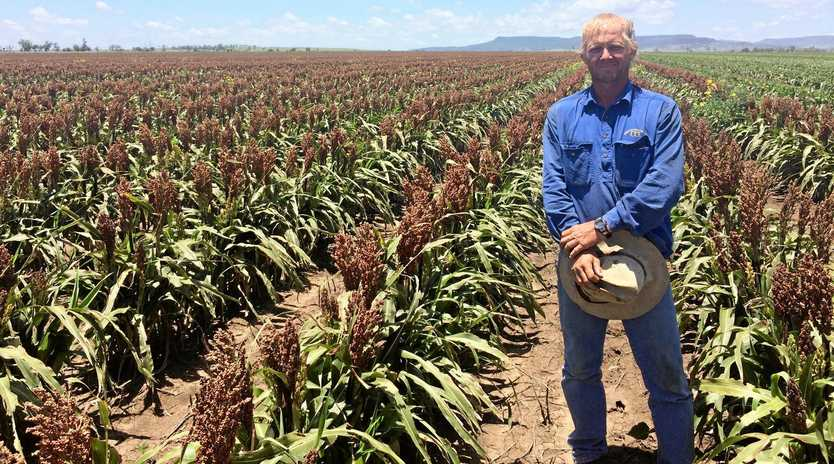 GOING STRONG: Producer Sid Godwin says agricultural colleges are vital to give young people exposure to all facets of the industry.