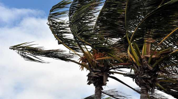 STRONG WINDS: Mackay residents can expect strong winds this weekend.