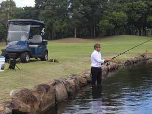 Sharks spotted in Gold Coast golf course lake