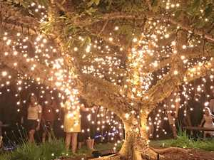 Enchanted Gardens make Brisbane sparkle this festive season