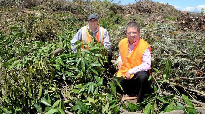 MULCH: Bundaberg Regional Council waste co-ordinator David Zorzan and Councillor Scott Rowleson with a massive pile of green waste at the University Drive dump.