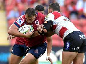 Queensland Reds charge into Coast camp