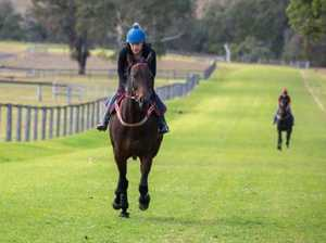 Winx on road back as Waller plans future talks