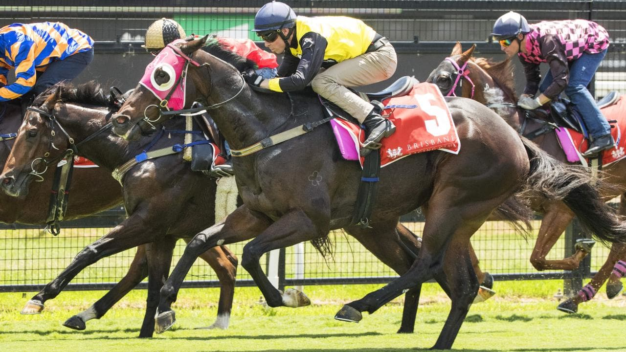 Horses put the new surface at Eagle Farm to the test during Monday's trials.