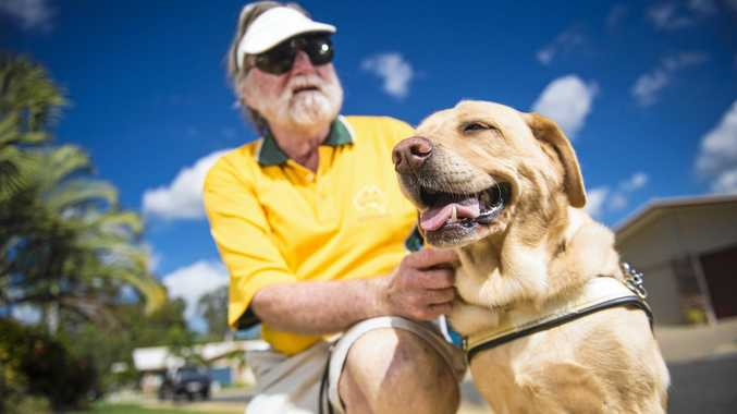 'Never be another Queeny': Fond memories of loved guide dog