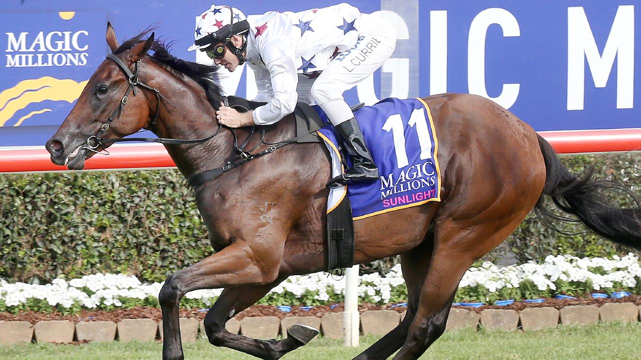 Jockey Luke Currie guides home Sunlight in the Magic Millions Classic.
