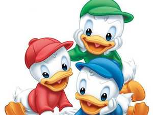 Donald Duck's nephews blamed by drink driver for crash