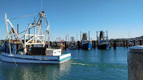 Coffs Harbour's public wharf is a popular spot for fishing.