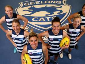 Cats shape as flag threat, says star recruit O'Connor
