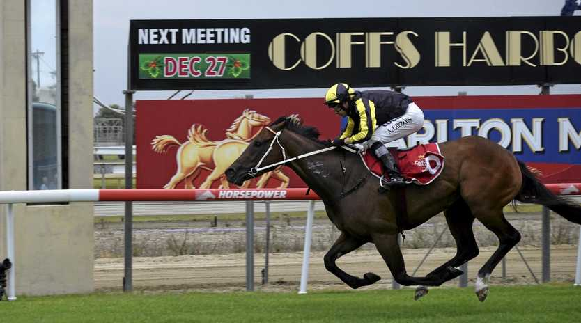 ANOTHER ONE: Newcastle trainer Kris Lees had a big day at Coffs Harbour on Thursday with three winners, including Mimic ridden by Andrew Gibbons.