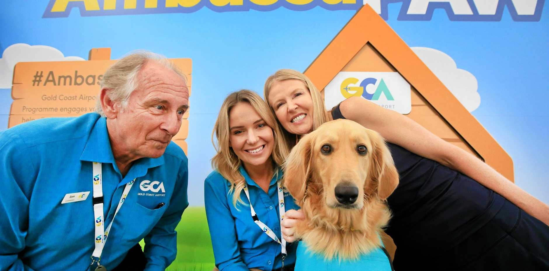 PLANE SAILING: Gary the dog with owner Ellen Thomas , airport volunteer Tom Meath and chief operating officer Marion Charlton.