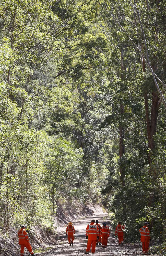 SES volunteers search forest near the town of Kendall in the week after the abduction. Picture: David Moir