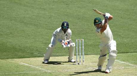 Finch hit fifty in a strong showing on day one. (Photo by Ryan Pierse/Getty Images)