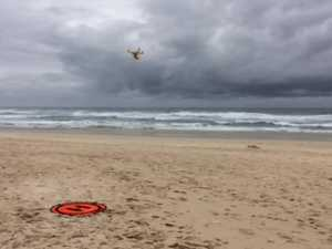 New measures for shark surveilance