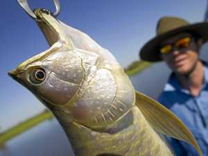 Top fishing tips for the top end