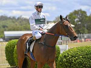 Widespread field of winners salute at Ipswich track