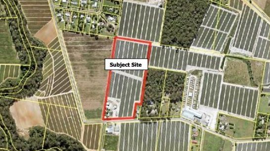 Mushrooms, strawberries planned in farm expansion