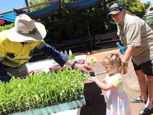 Tim Carnell hands Rebecca Savio a capsicum plant.