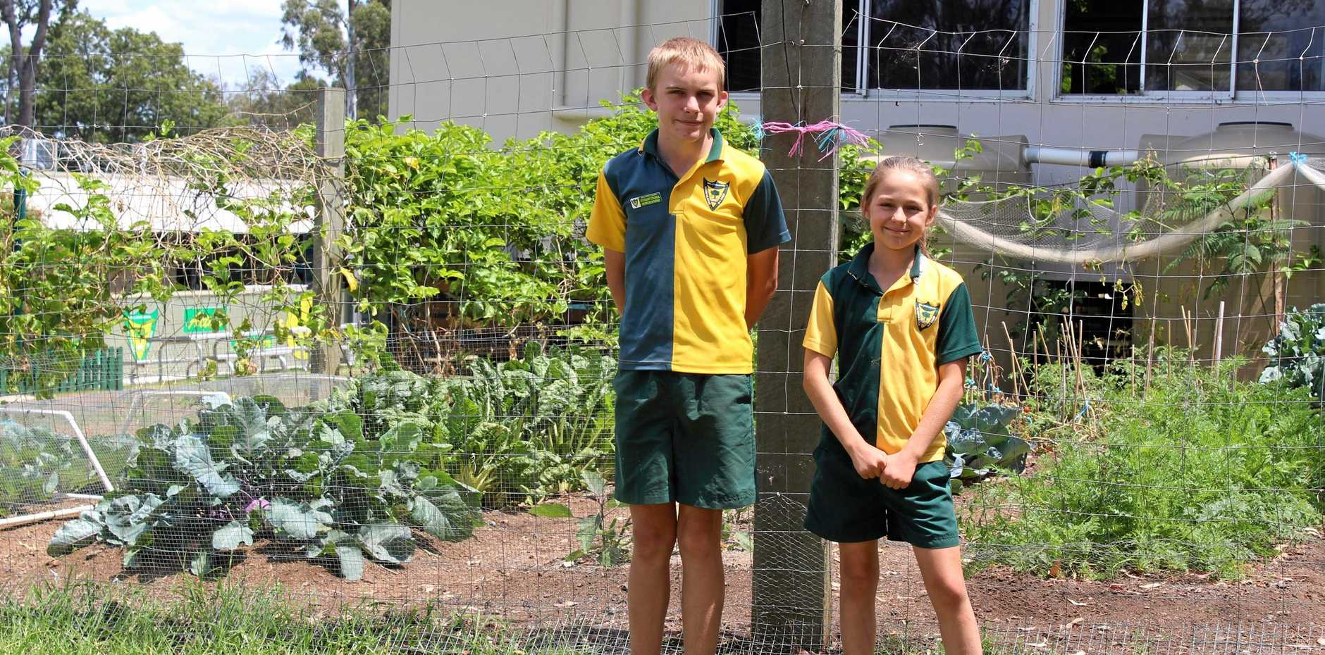 WELL DONE: Green is the new gold for Bell State School, after they led their school to a victory in the Eco Schools program, achieving the Green Flag status. Pictured are William Green and Tahleyah Fullagar.
