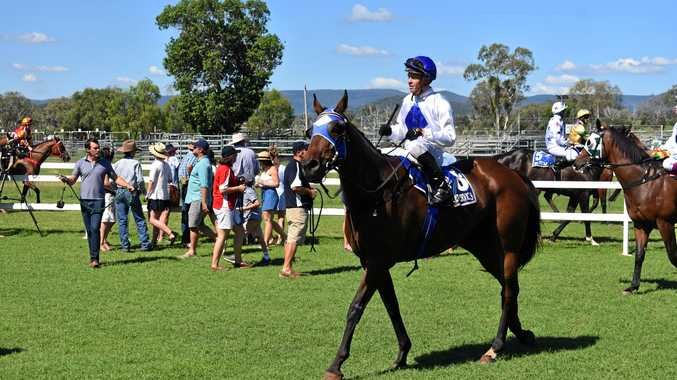 Reset Chinchilla Cup day set to jump Saturday