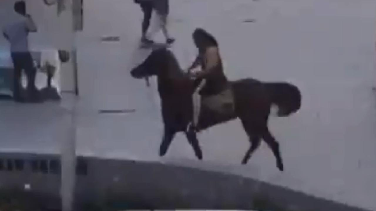 Footage appears to show Elomar riding a horse at Cronulla beach. Credit: Seven News