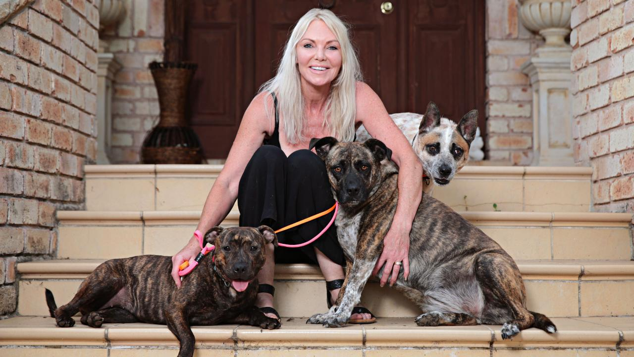 Debbie Moodie at her home with some of the stray dogs she is housing. Picture: Adam Yip