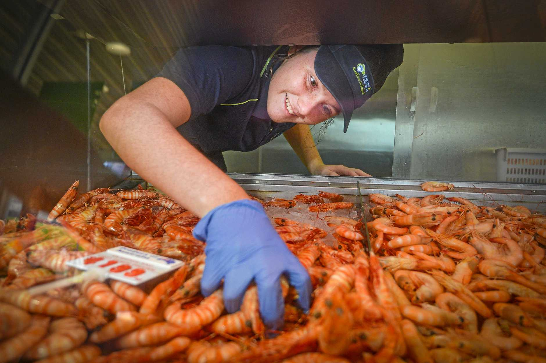 SERVE OF SEAFOOD: Taryn Wittingham from Gladstone Fish Market is preparing for this year's Christmas rush on prawns and other seafood.