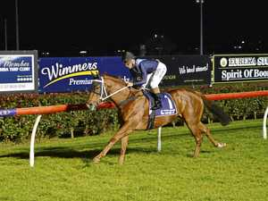 Trainer has high hopes to snare Magic Millions spot