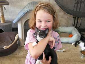 'Give, spend, save' jars nurture girl's animal love