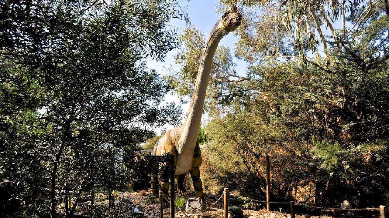 What about Dinosaur World in Victoria? Picture: Supplied/ Dinosaur World.