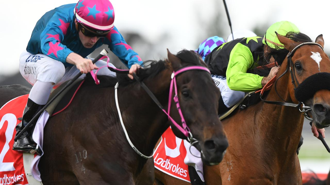 Dylan Dunn enjoyed a day out on Saturday, landing six winners.