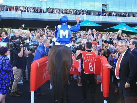 Winx returns to scale after winning the George Main Stakes.