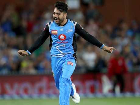 Rashid Khan's heroics weren't enough for Adelaide.