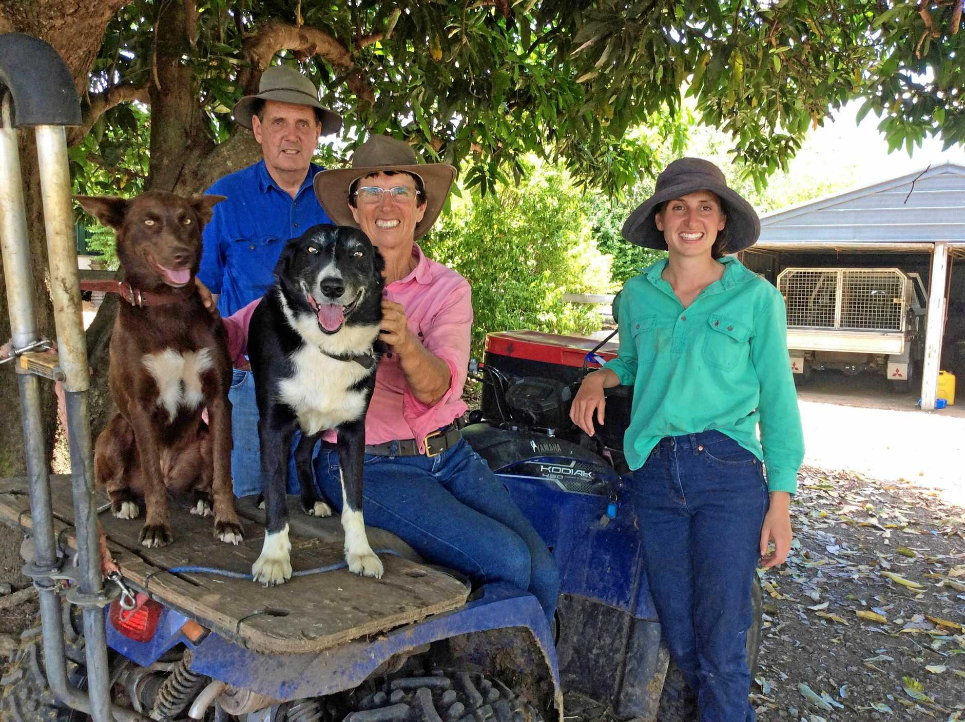 LOVING THE FARM: Sam, Fleur and Elizabeth Tonge with dogs Freddie and Wilmer at their Dobies Bight dairy farm, near Casino.