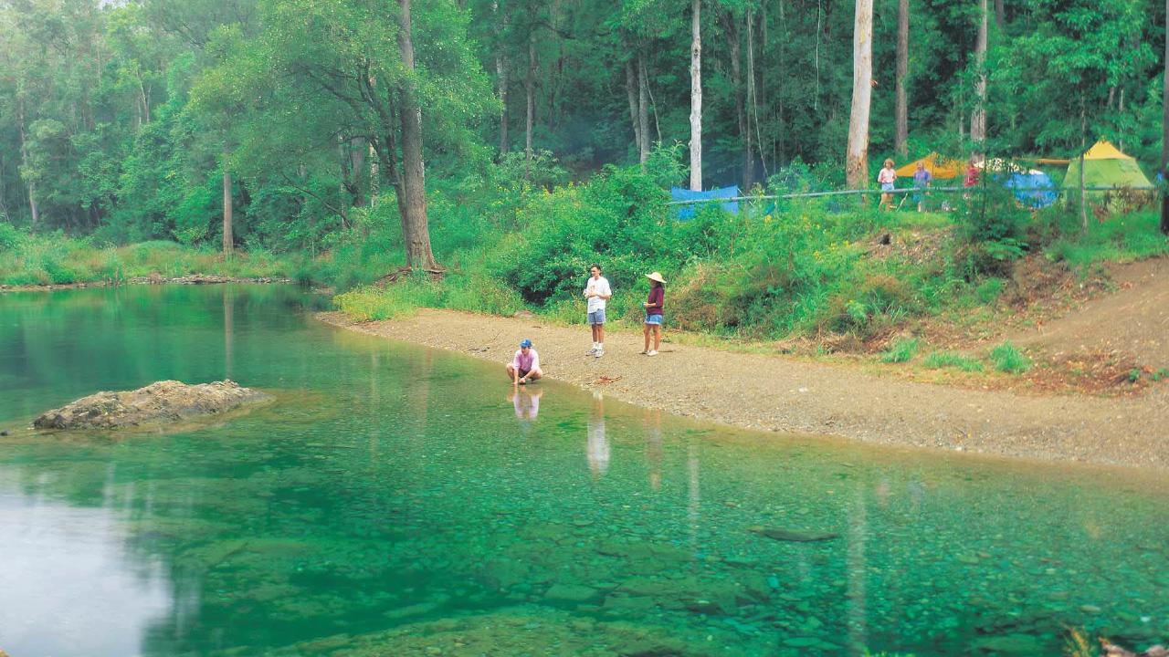 Booloumba Creek Falls. Picture: Tourism Qld