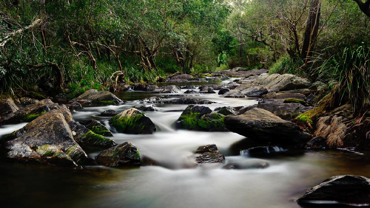 Rocksberg. Picture: Shaun White