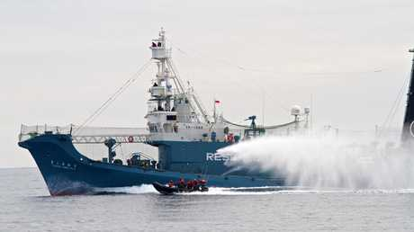 Japanese whaling ship Yushin Maru No. 3 shoots a water cannon at Sea Shepherd's inflatable boat in the Southern Ocean off Antarctica in 2011. Picture: Gary Stokes/Sea Shepherd/AP